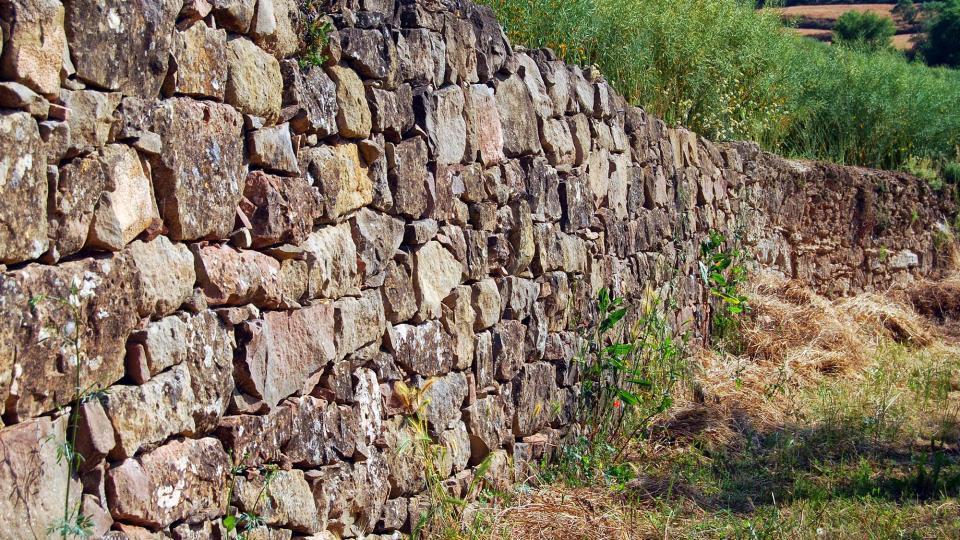 05.06.2016 pared de pedra seca a les Torrovelles  Torà -  Ramon Sunyer