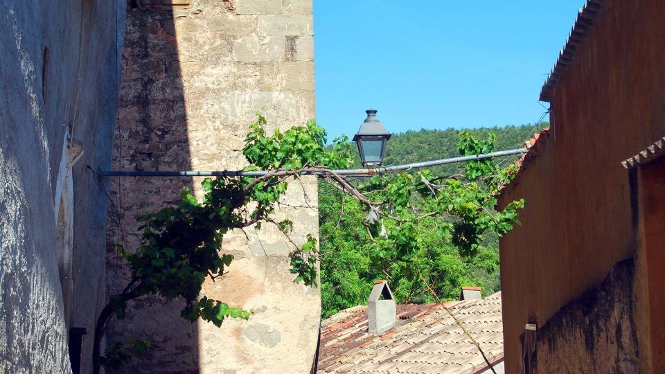 19.06.2016 poble  Cellers -  Ramon Sunyer