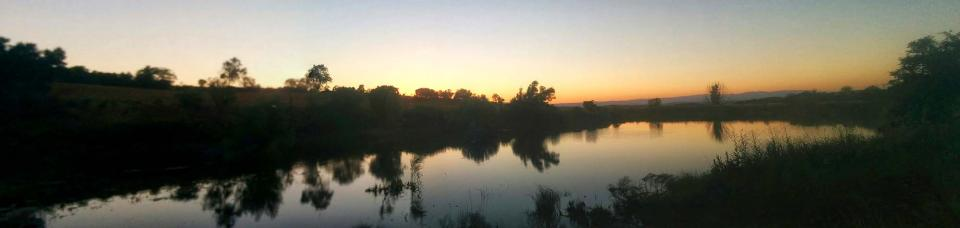 15.07.2016 la bassa al capvespre  Palouet -  Ramon Sunyer