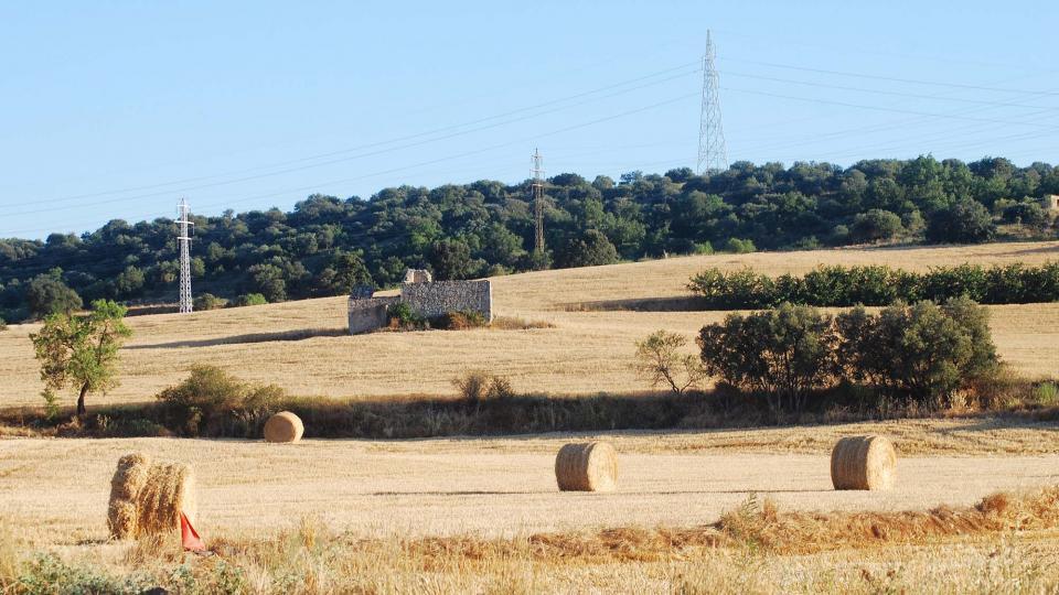 17.07.2016 paisatge  Sanaüja -  Ramon Sunyer