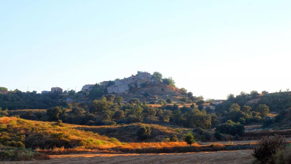 17.07.2016 paisatge  L'Alzina -  Ramon Sunyer