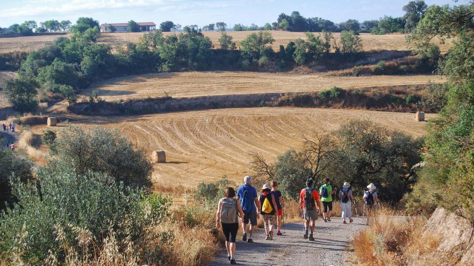 Caminant de Guissona a Torà