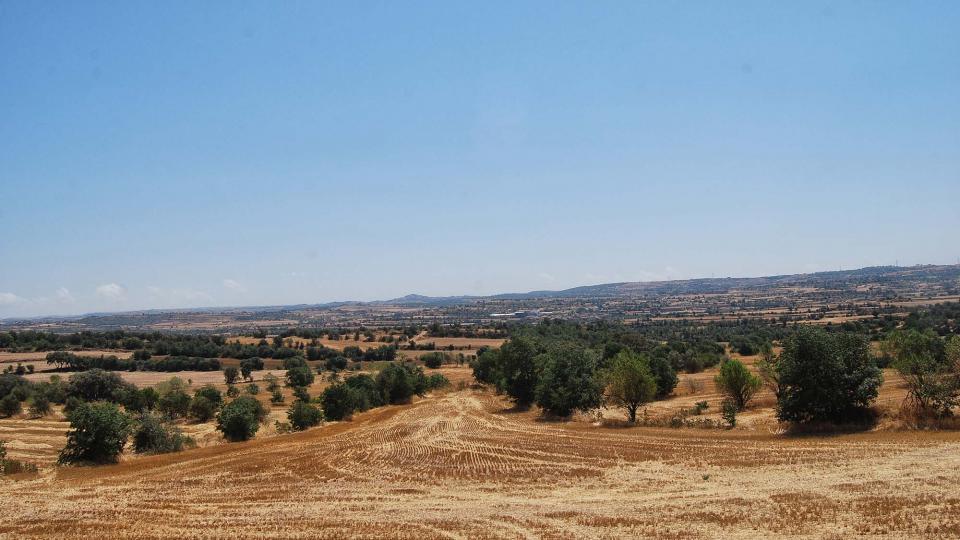 31.07.2016 paisatge  Plandogau -  Ramon Sunyer