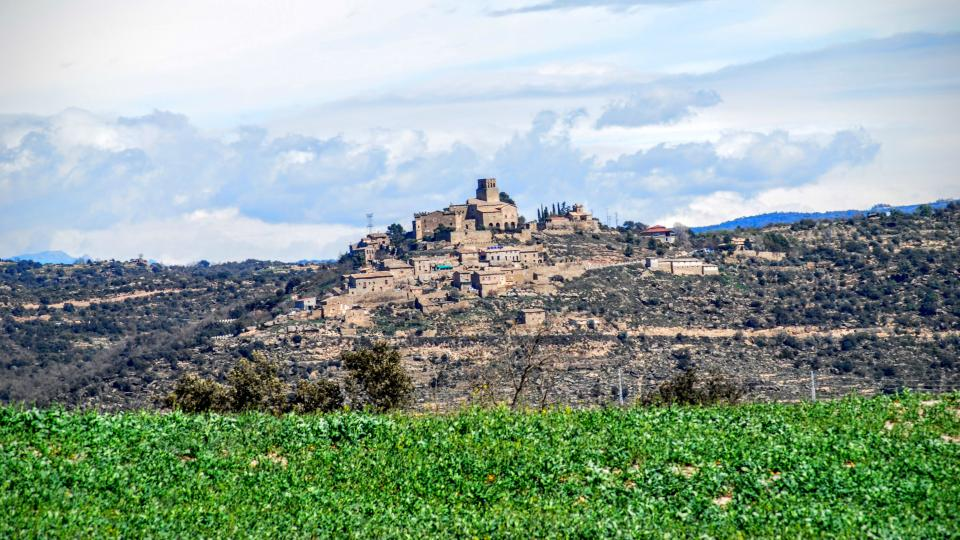 27.03.2016 Vista des de l'Alzina  Ribelles -  Ramon Sunyer