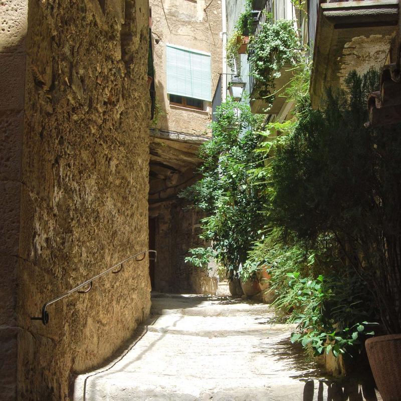 12.08.2016 carrer  Torà -  Ramon Sunyer