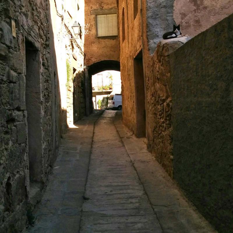 12.08.2016 carrer del forn  Torà -  Ramon Sunyer