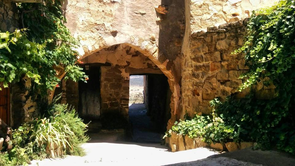 14.08.2016 vila closa  L'Alzina -  Ramon Sunyer