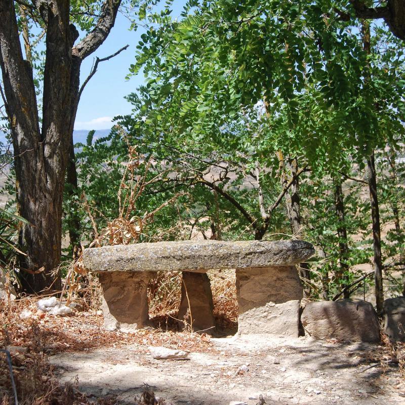 14.08.2016 banc de pedra  L'Alzina -  Ramon Sunyer