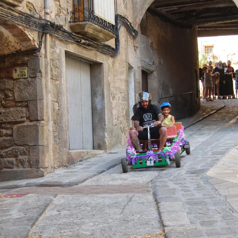 03.09.2016 Baixada d'andròmines  Torà -  Ramon Sunyer
