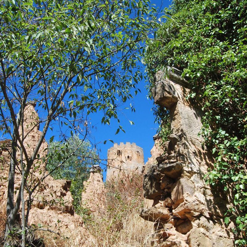 18.09.2016 Torre  Vallferosa -  Ramon Sunyer