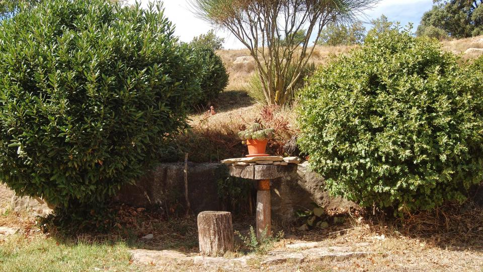 18.09.2016 jardí  Peracamps -  Ramon Sunyer