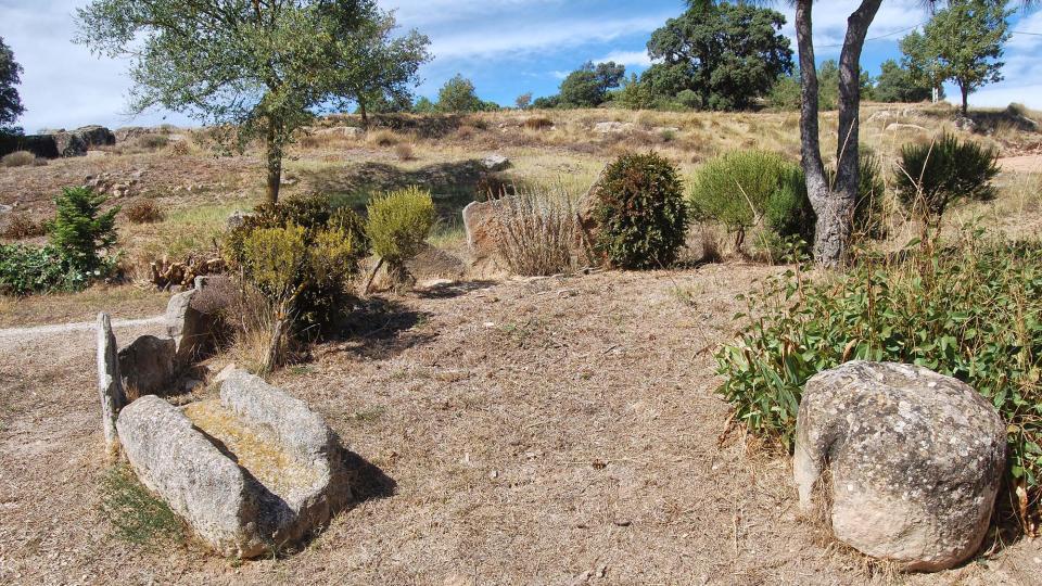 18.09.2016 detall jardí  Peracamps -  Ramon Sunyer