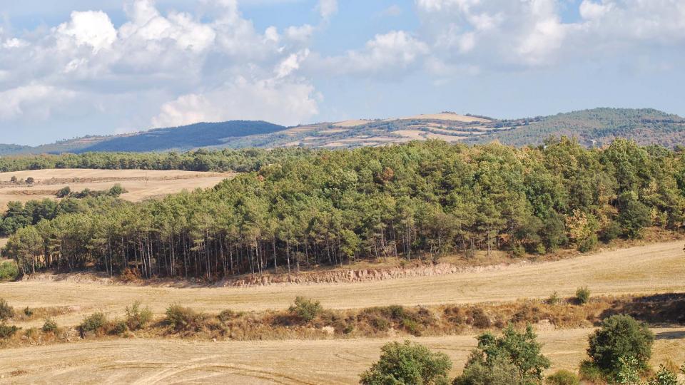 10.09.2016 paisatge  Sant Serni -  Ramon Sunyer