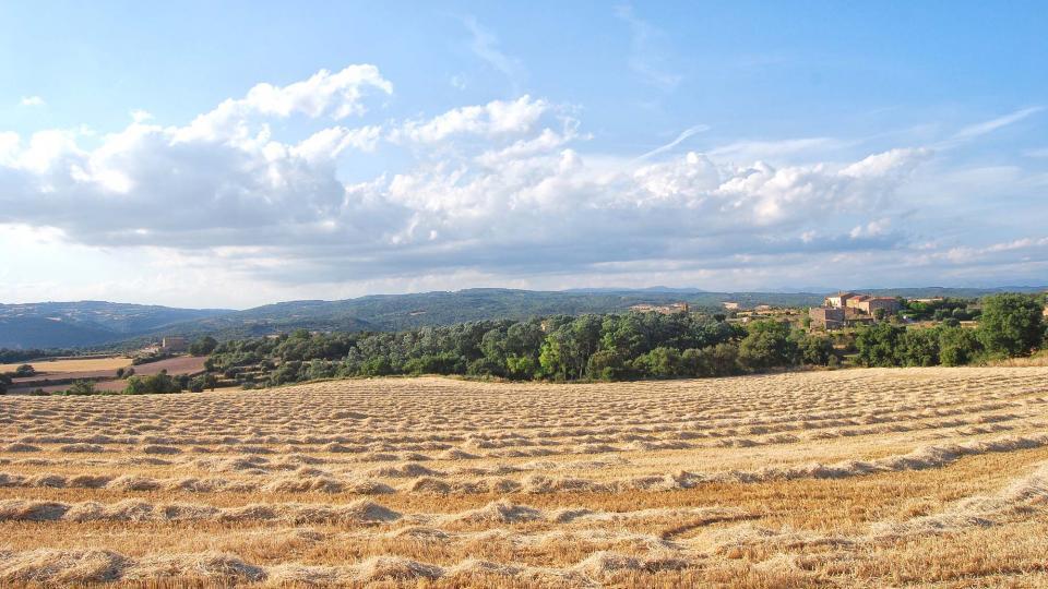25.06.2016 paisatge  Sant Serni -  Ramon Sunyer