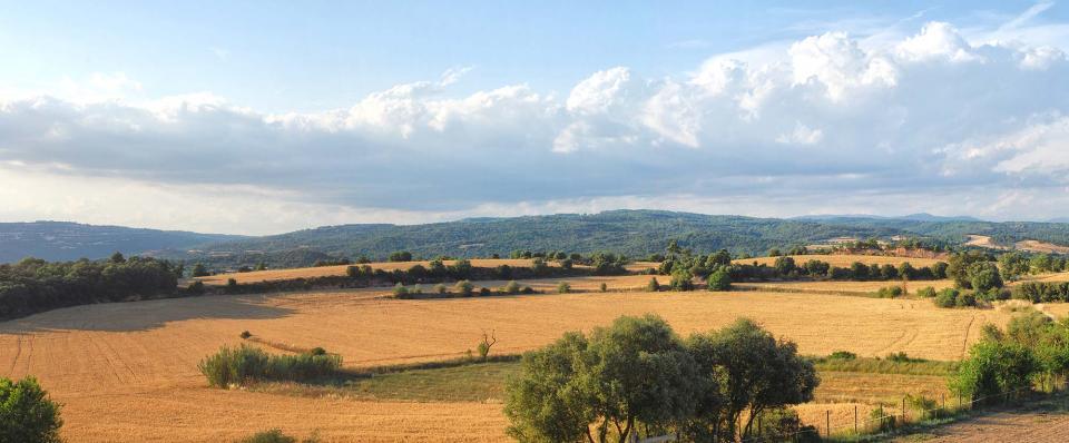 25.06.2016   Sant Serni -  Ramon Sunyer