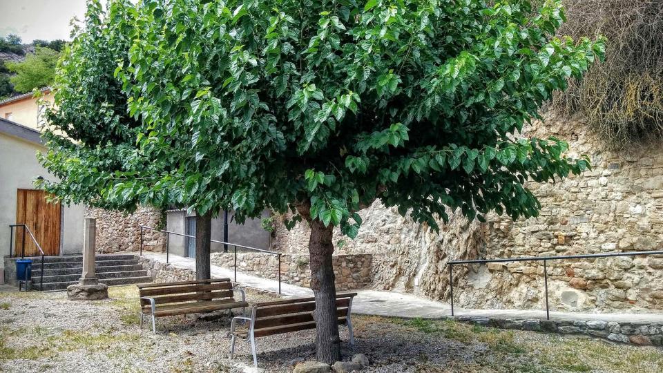 15.08.2015 parc i creu de Cervera  Castellfollit de Riubregós -  Ramon Sunyer