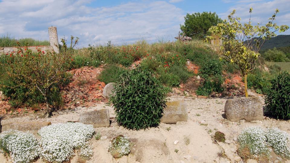 15.05.2016 jardinet  Els Quadrells -  Ramon Sunyer