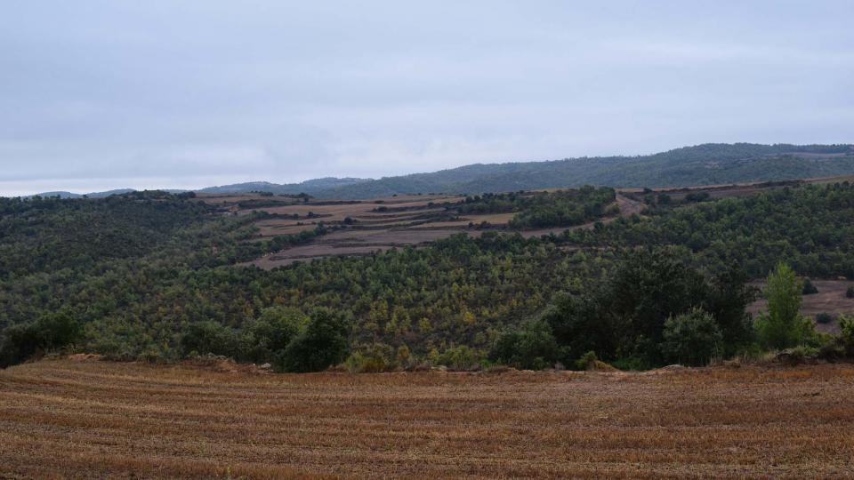 22.10.2016 paisatge  Fontanet -  Ramon Sunyer