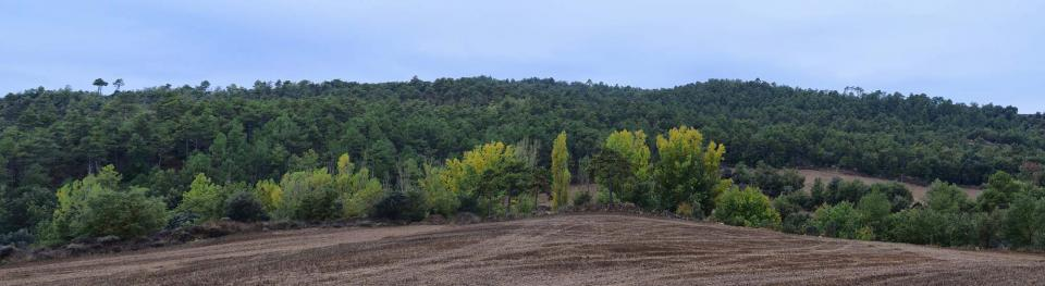 26.10.2016 paisatge  Fontanet -  Ramon Sunyer