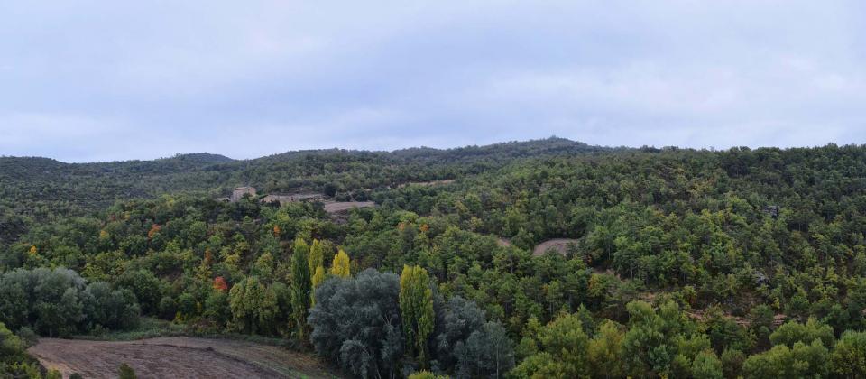 26.10.2016 Ruta de senderisme Fontanet-Vallferosa  - Autor Ramon Sunyer