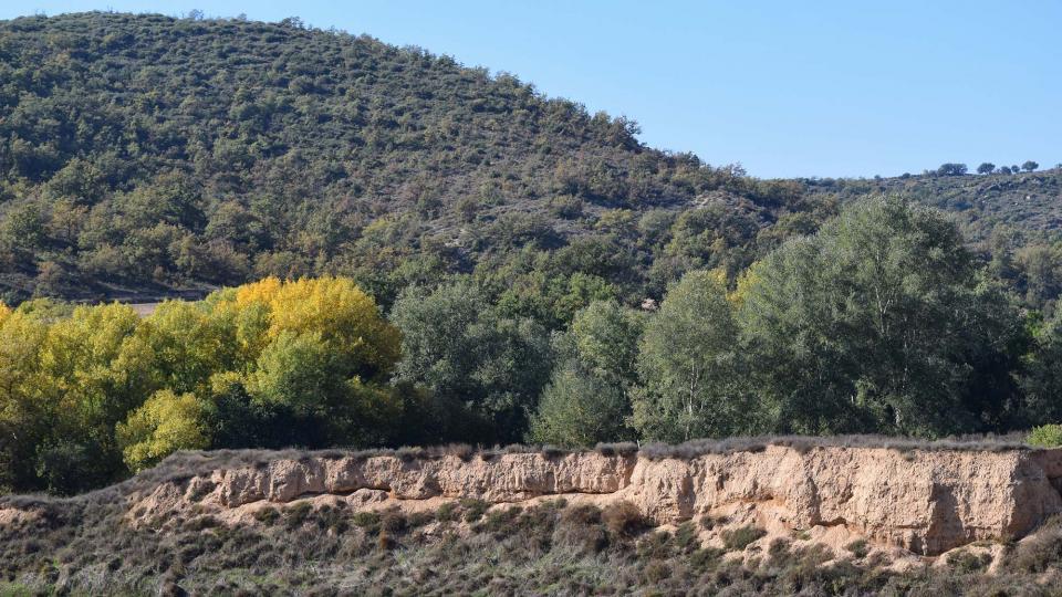 01.11.2016 molí del cava  Puig-Arner -  Ramon Sunyer