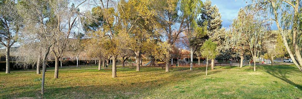 04.12.2016 parc  Torà -  Ramon Sunyer