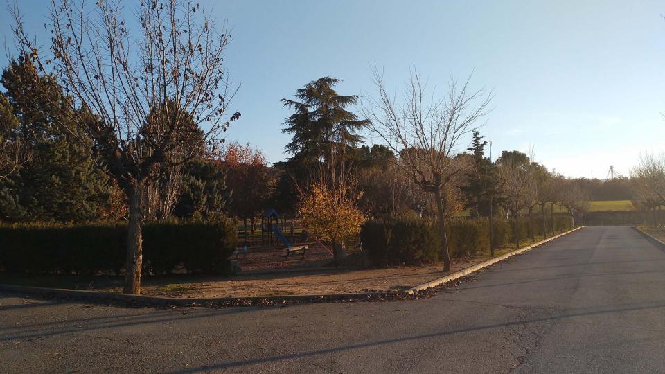 08.12.2016 parc  Torà -  Ramon Sunyer