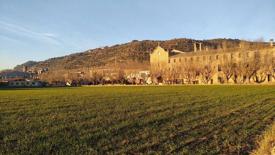 08.12.2016 convent  Torà -  Ramon Sunyer