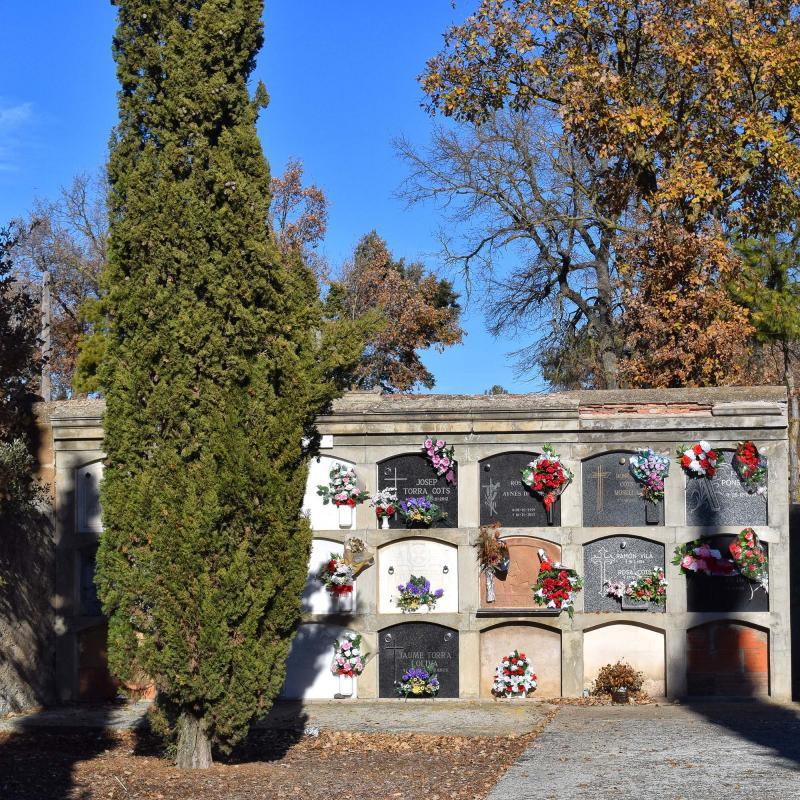 11.12.2016 cementiri  Torredenagó -  Ramon Sunyer
