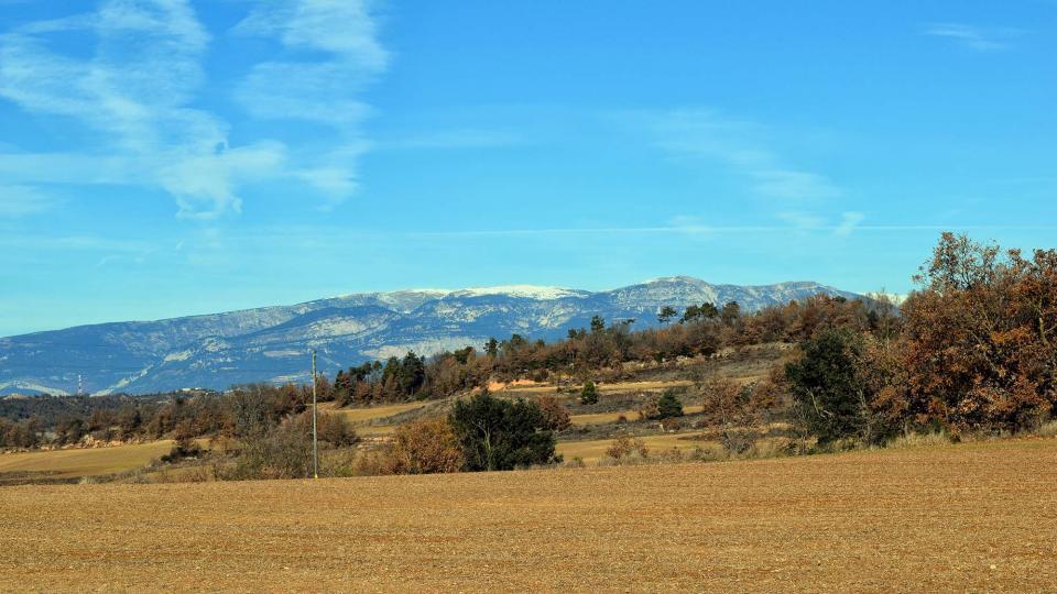 11.12.2016 paisatge  Llobera -  Ramon Sunyer