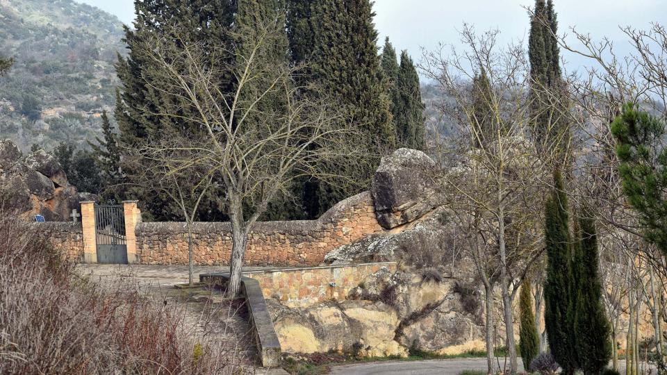 05.01.2017 cementiri  Oliola -  Ramon Sunyer