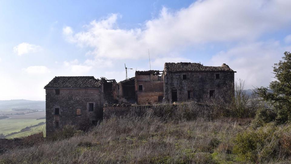 05.01.2017   Claret d'Oliola -  Ramon Sunyer