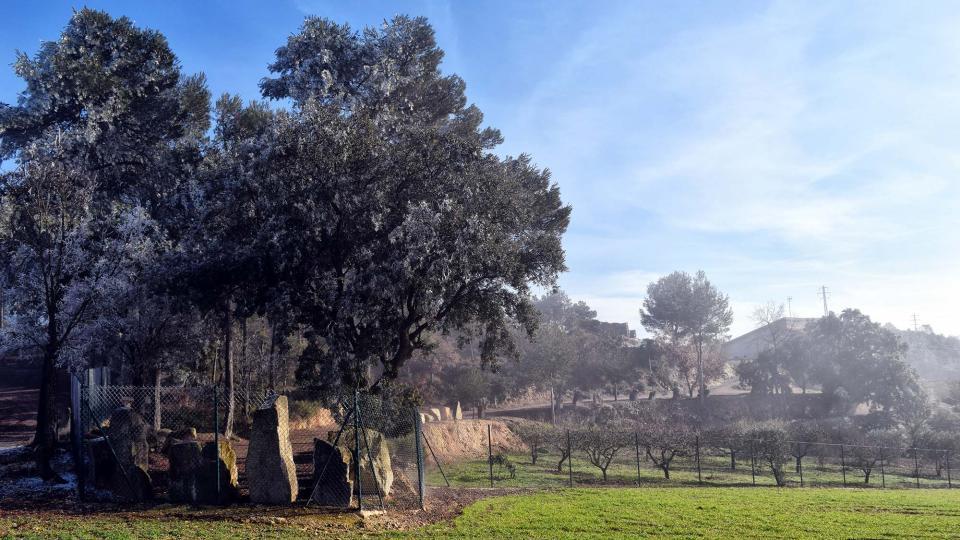 02.01.2017 Cal Tonic  Castellfollit de Riubregós -  Ramon Sunyer