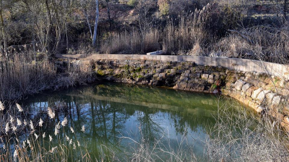 29.01.2017 peixera  Fontanet -  Ramon Sunyer
