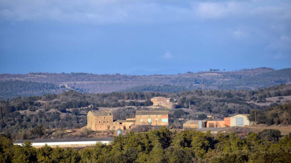 29.01.2017   Sant Serni -  Ramon Sunyer