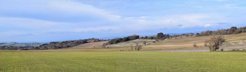 29.01.2017 Plans de Millars  Castellfollit de Riubregós -  Ramon Sunyer