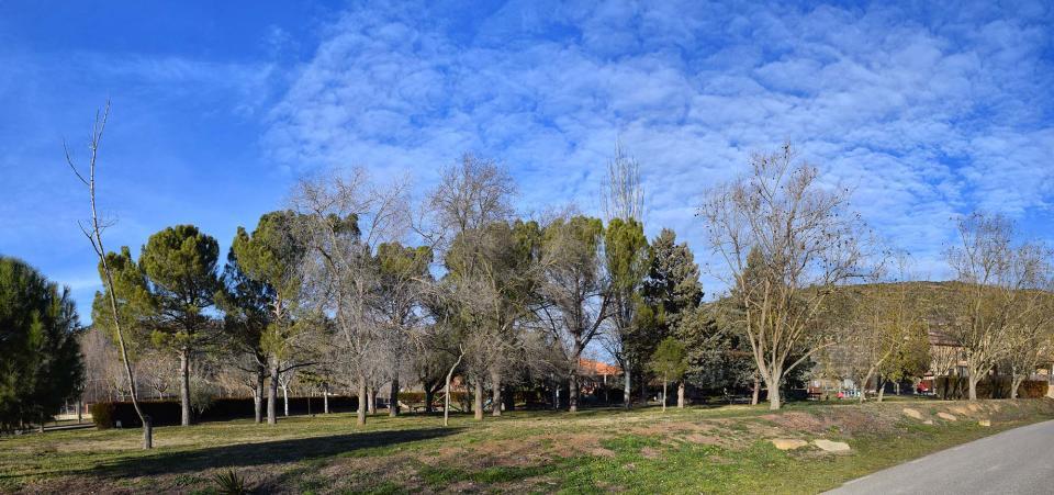 29.01.2017 Parc  Torà -  Ramon Sunyer