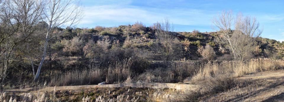 29.01.2017 Peixera del Duc al riu Llanera  Fontanet -  Ramon Sunyer