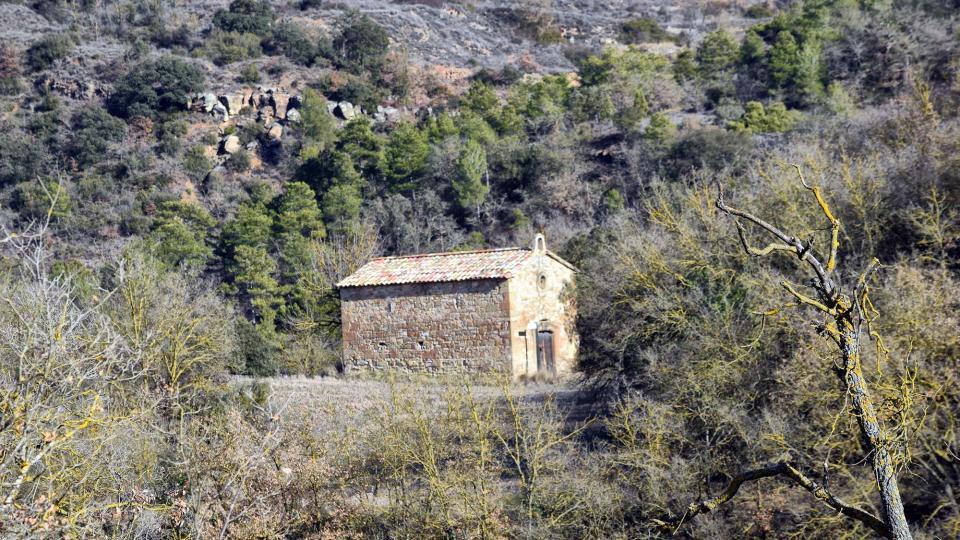 29.01.2017 Sant pere de Magrà  Castellfollit de Riubregós -  Ramon Sunyer