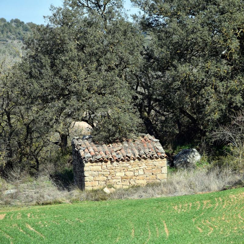 18.02.2017 cabana  Castellfollit de Riubregós -  Ramon Sunyer