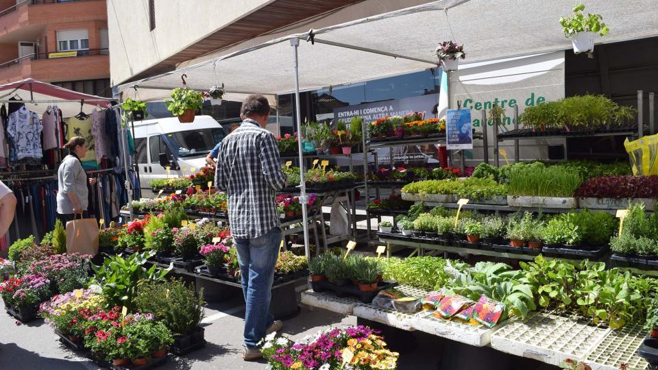 14.04.2017 Planters i flors a la plaça de la Creu  Torà -  Ramon Sunyer