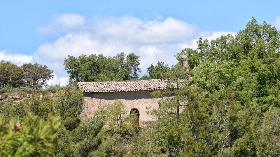 07.05.2017 Església de Sant Miquel  Vallmanya -  Ramon Sunyer