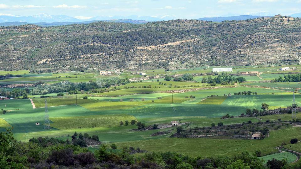 29.04.2017 paisatge a les Torrovelles  Torà -  Ramon Sunyer