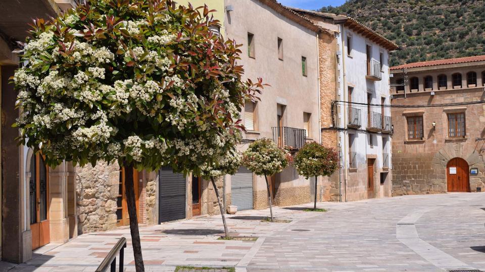 29.04.2017 Plaça del Vall  Torà -  Ramon Sunyer