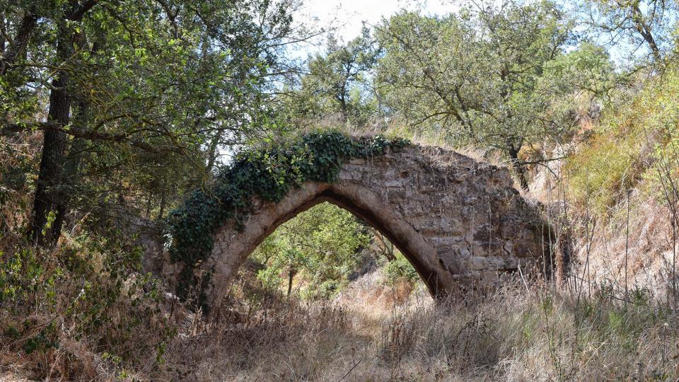 11.09.2017 Pontet del Diable o de la Sentiu. Aquest aqüeducte és l'única construcció visible de l'antic rec dels Moriquers.  Torà -  Ramon Sunyer