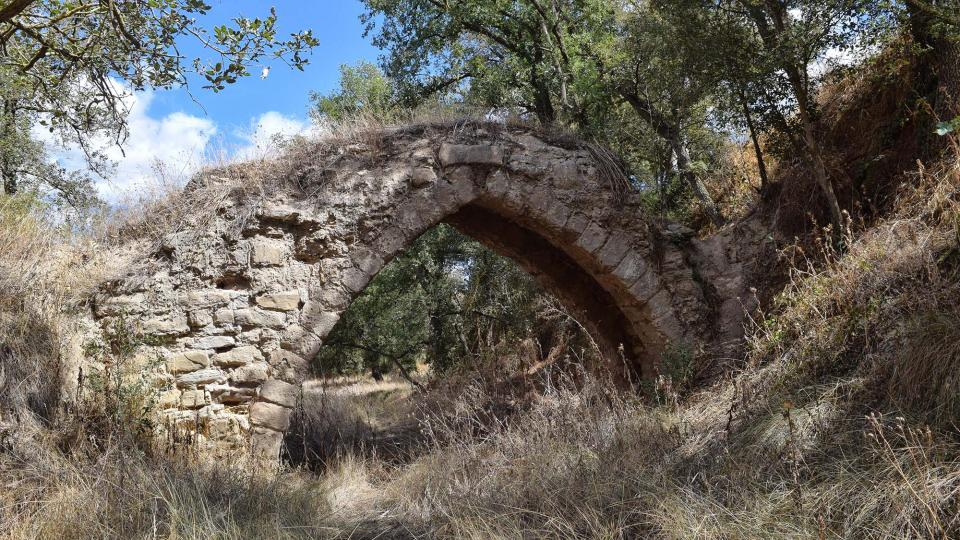 Pont de el Diable - Autor Ramon Sunyer (2017)