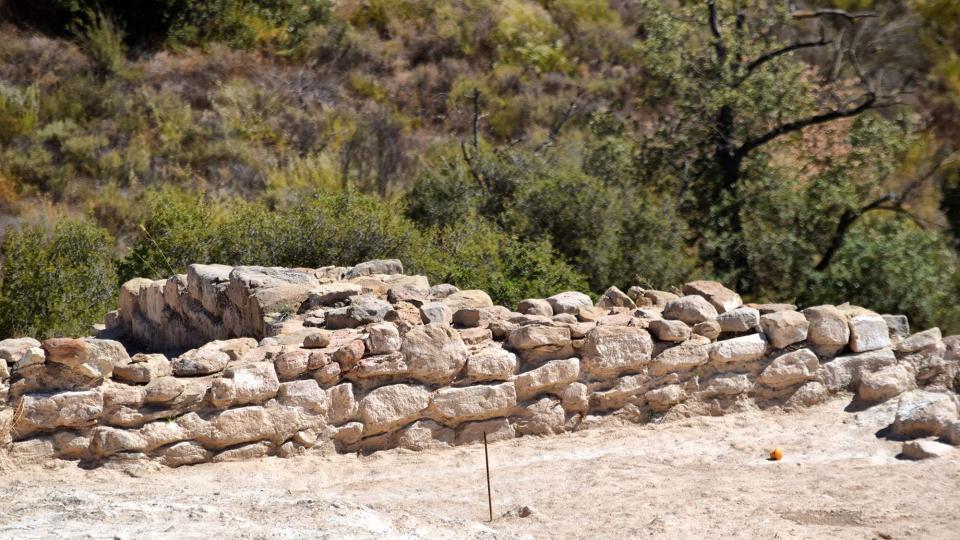 Jaciment romà de Puig Castellar - Autor Ramon Sunyer (2017)