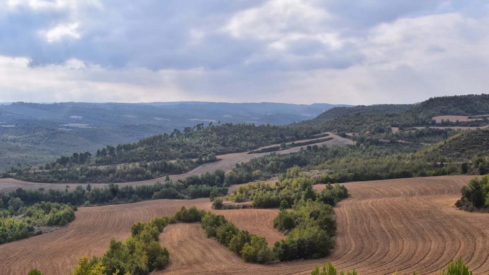 15.10.2017 paisatge  Vallmanya -  Ramon Sunyer