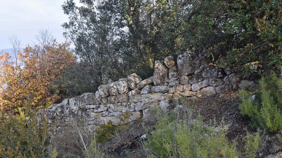 08.12.2017 Sant Pere de Figuerola  Fontanet -  Ramon Sunyer
