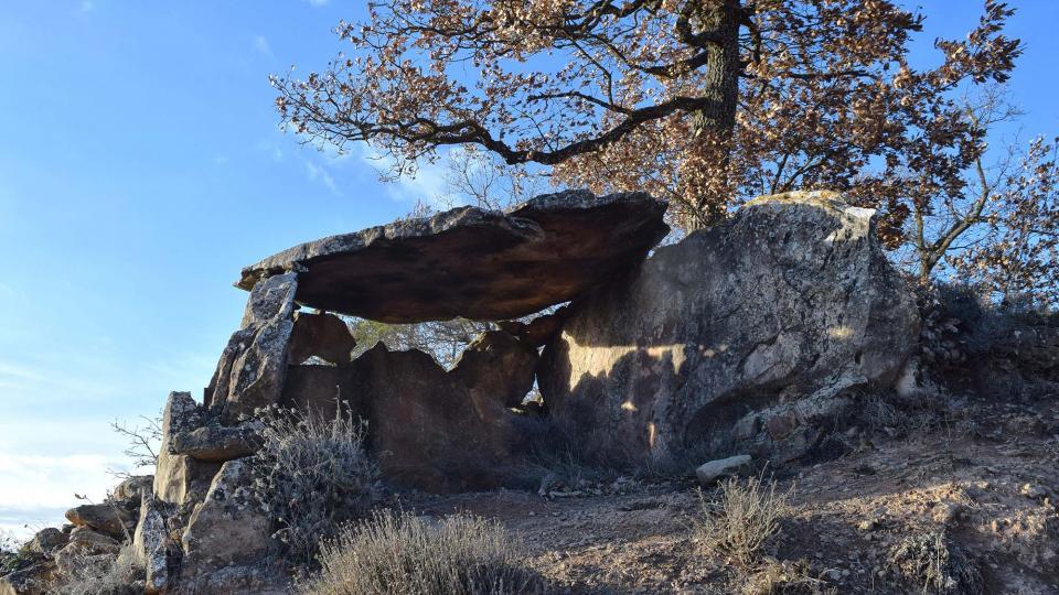 02.01.2018 Ruta de senderisme Ardèvol - Dolmen de la Pera - Dolmen de Casacremada - Santuari Mare de  - Autor Ramon Sunyer